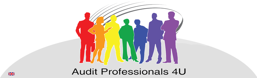 LOGO-website-Audit-Professionals-breed-flags-copy